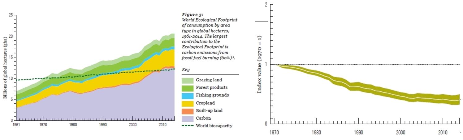 Increase of global footprint and decrease populations of vertebrate species